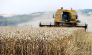 Tax tips for farming businesses